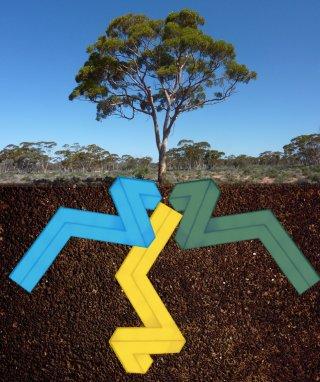 Stromae au pays de ses racines… carrées