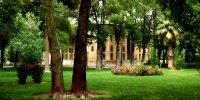 Iran, le pays des Roses noires – 29 mai 2015