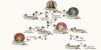 La succession de Clotaire ou la faide royale