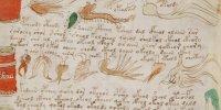 Le manuscrit de Voynich enfin décrypté?