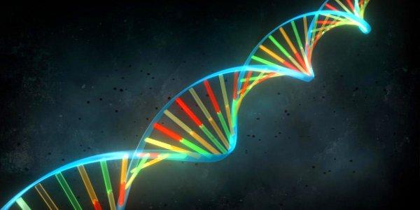 Tests génétiques pour tous?