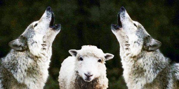 A ceux qui hurlent au loup fasciste