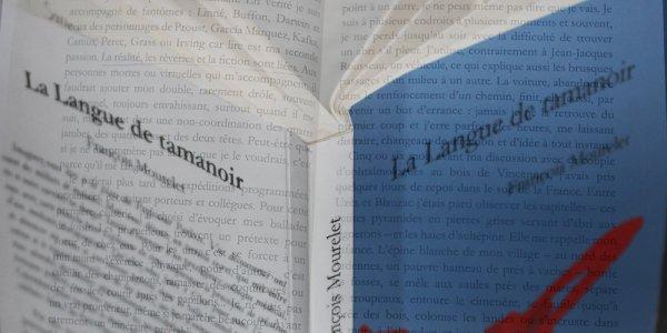 La langue de tamanoir, l'alchimie narrative à la vie à la mort