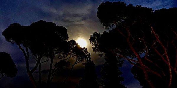 Lueur nocturne
