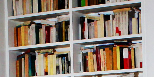 La bibliothèque 2015 de MN
