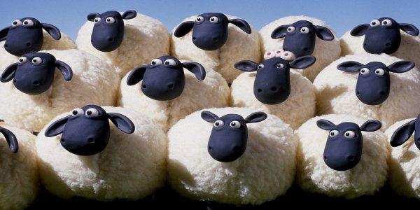 De l'école des singes à celle des moutons