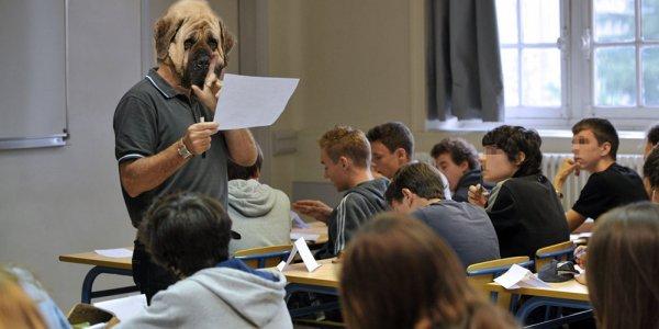 Vie de prof, vie de chien