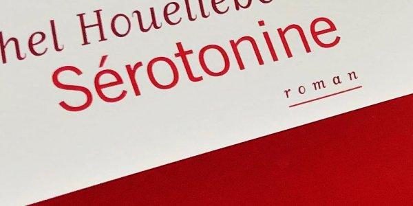 Sérotonine, un roman métaphysique